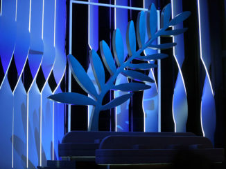 Cette année, le Festival de Cannes se limite à une sélection de 56 films sur les 2 067 reçus.